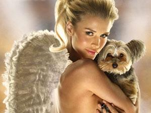 Гламурные собачки – вечная любовь или дань моде?