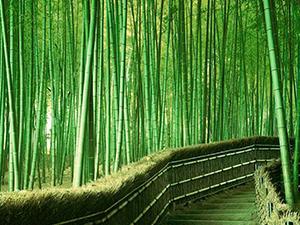 Самые красивые природные тоннели мира