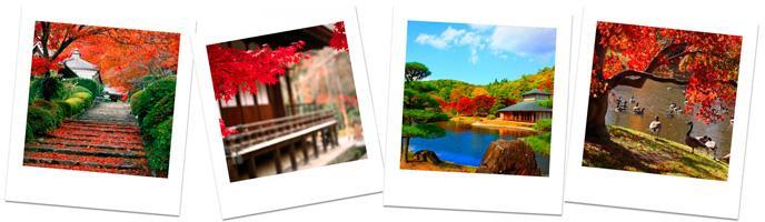 5 идей для отдыха осенью