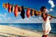 Остров Маврикий: отдых в раю