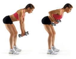 Упражнения с гантелями - упражнение для мышц рук